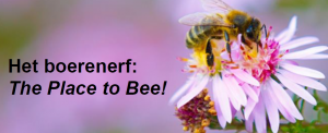 LTO Boerenerf Place to Bee